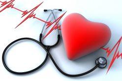 Training for Optimum Health and Wellness